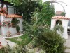 schmale Gartenmauer mit extra kleinen Halbschalen abgedeckt