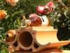 geschwungener Weinlagerstein als schöne Dekoration