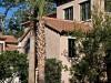 Anwesen in mediterranem Stil mit vielen Pflanzen und Palmen