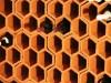 Nahaufnahme eines Weinregalsystems aus wabenförmigen Weinlagersteinen