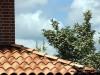 Extrem gewölbter Dachziegel im mediterranen Farben