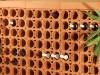 schönes gratliniges Weinregal aus Weinlagersteinen für 2 Falschen aufgebaut