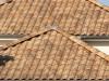 Zwei Walmdächer in verschiedenen Ebenen mit erdfarbenen Dachsteinen aus Ton