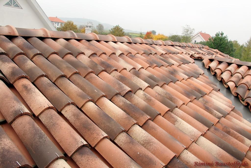 Moench Nonne Halbschalen verklammert auf einem Dach