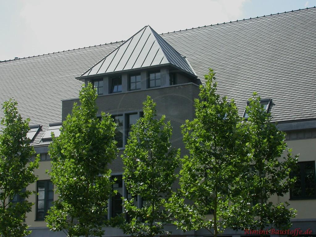 grosses Satteldach mit dunklen Schindeln gedeckt