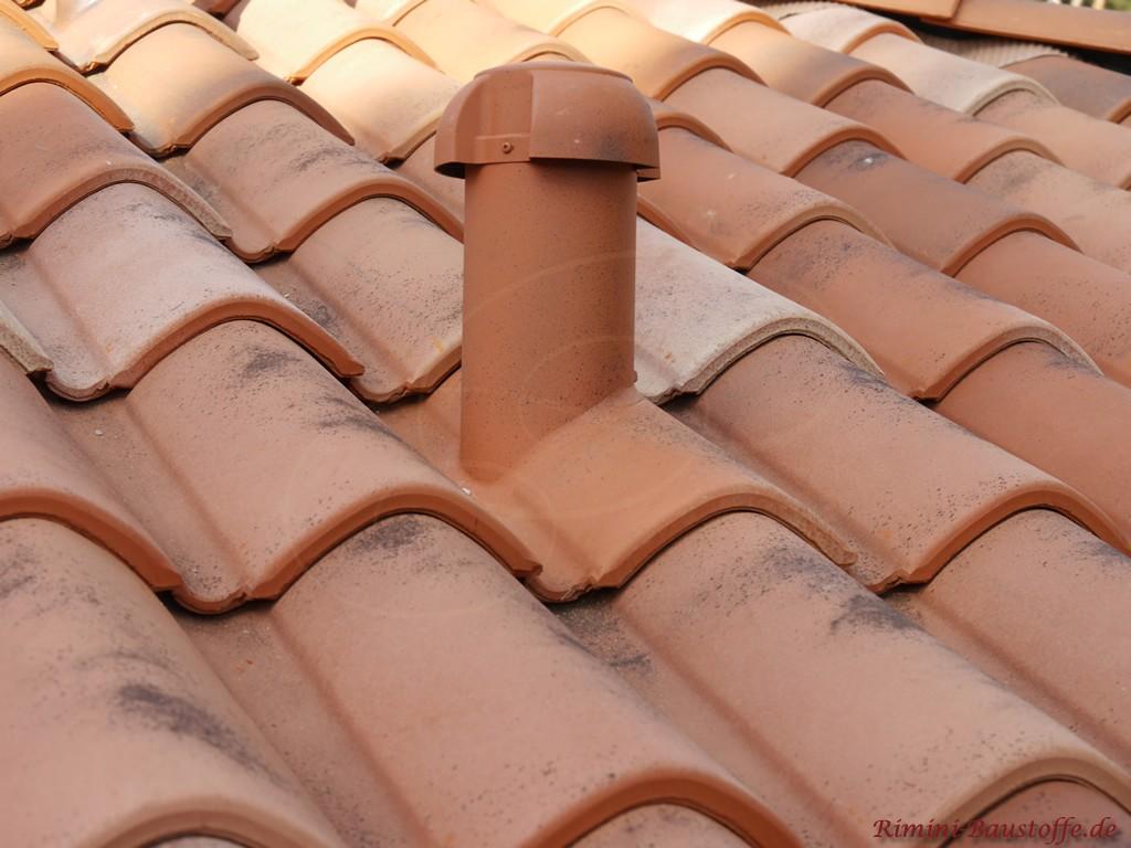Sanitaerluefter passend zur Farbe des Dachziegels angefertigt