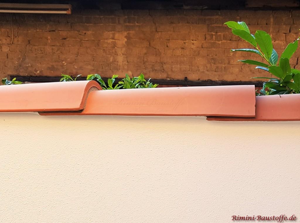 auf schmalen Gartenmauern kann man Halbschalen auch laengs verlegen