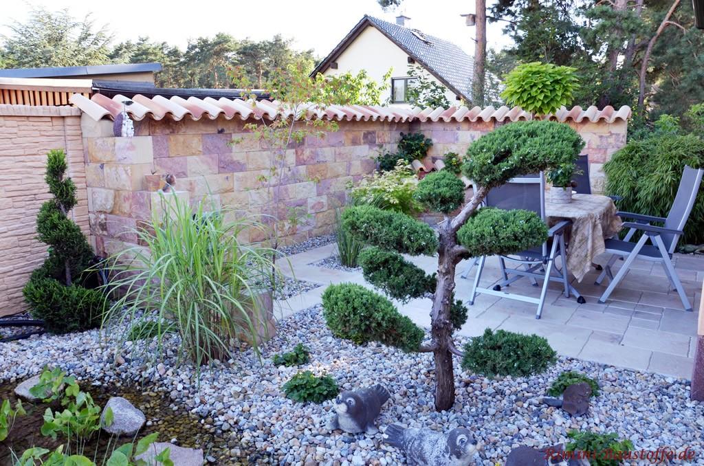 strohgelb geflammte Halbschalen aus Italien auf einer Gartenmauer
