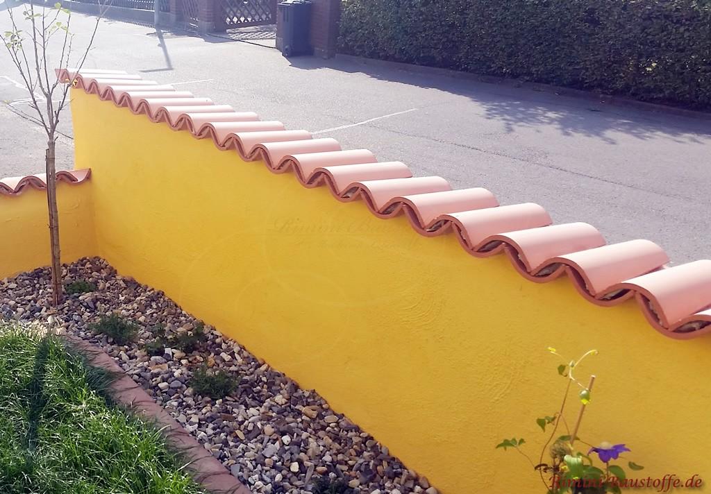 Moench Nonne Halbschalen auf einer schmalen Mauer