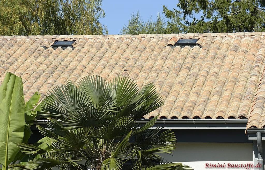 mediterraner Flair durch schoene Dachziegel und Palmen
