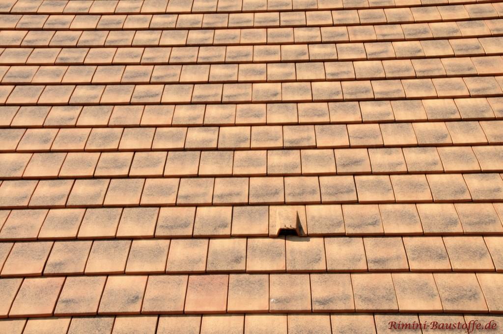 Glatter dachziegel textur  Giverny - geprüfter Glattziegel aus Frankreich