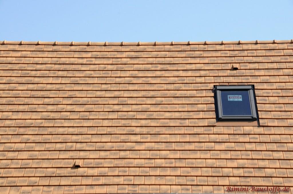 Sandfarbener Glattziegel mit schwarzem Dachfenster und Flächenlüfter