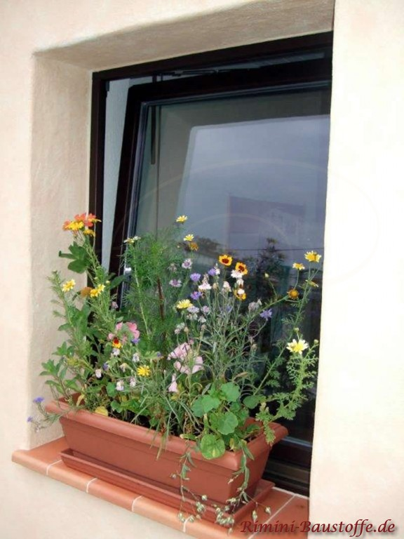 Fensterbank mit schoenen Blumen