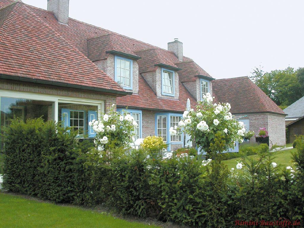 Schöner Vorgarten mit einem altem Schindelhaus im Hintergrund