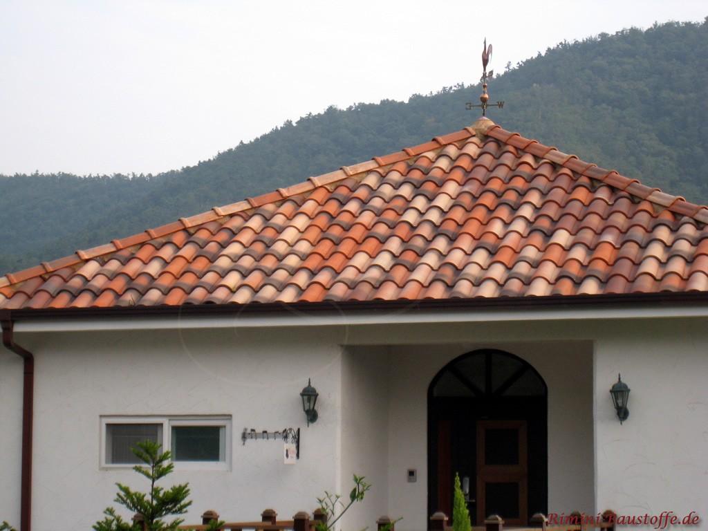 Einfamilienhaus mit weißer Putzfassade und schöner dunkler Holztür