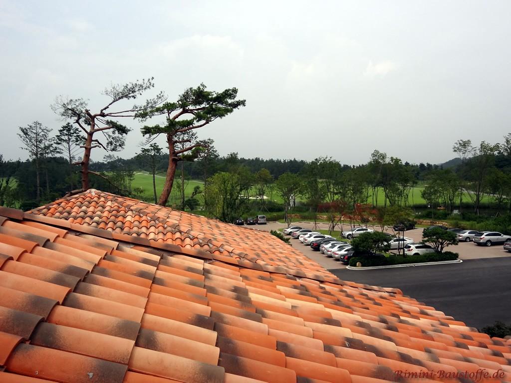 schönes mediterranes Dach in Röttönen mit dunklen Engoben