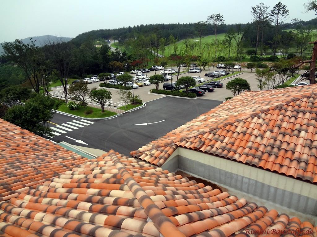 sehr schönes mediterranes Dach mit schöner Farbgebung in einer Herbstlaubmischung