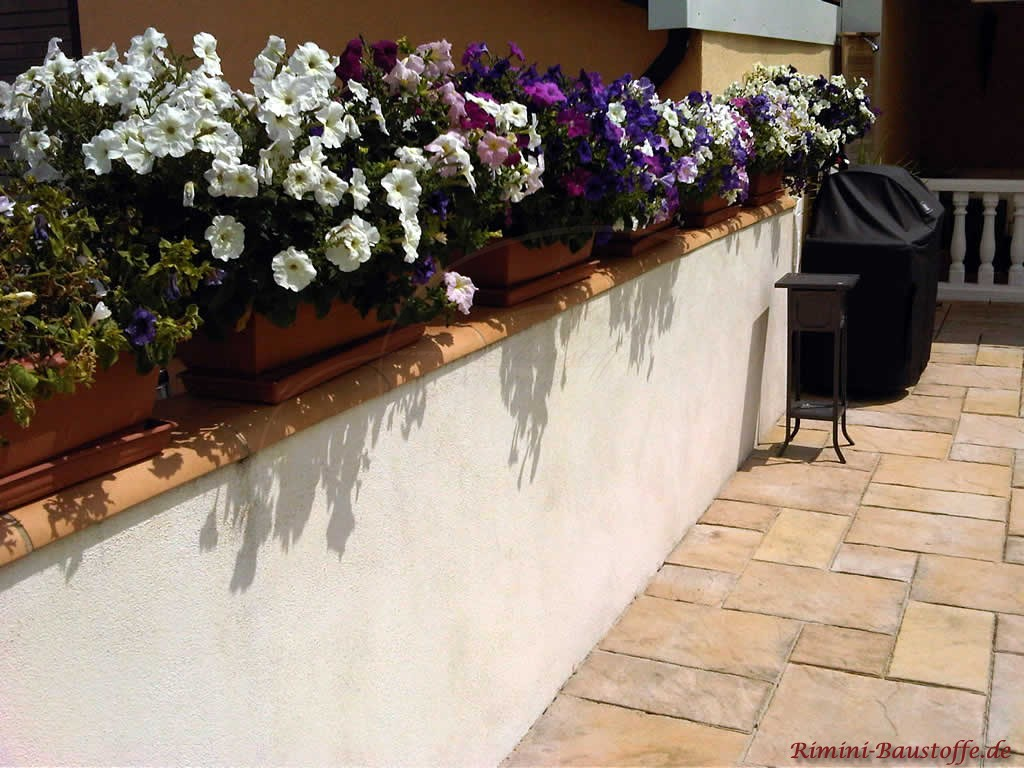 Gartenmauer mit roter Mauerabdeckung und Blumen
