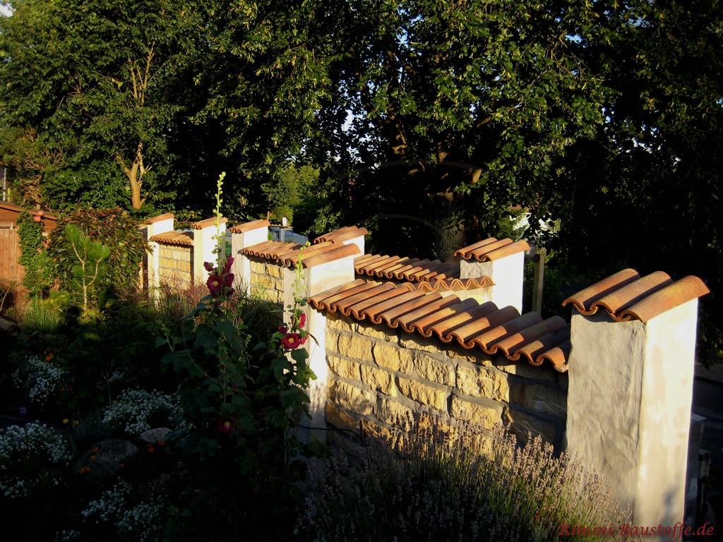 Feldsteinmauer mit alten Halbschalen abgedeckt