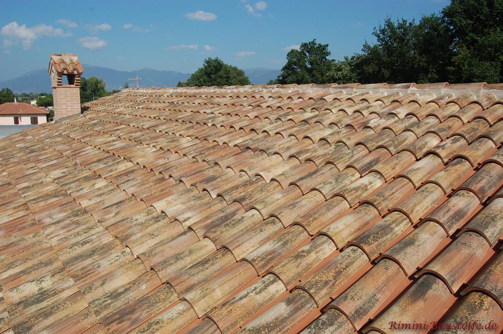 Dachfläche wie aus der Toskana