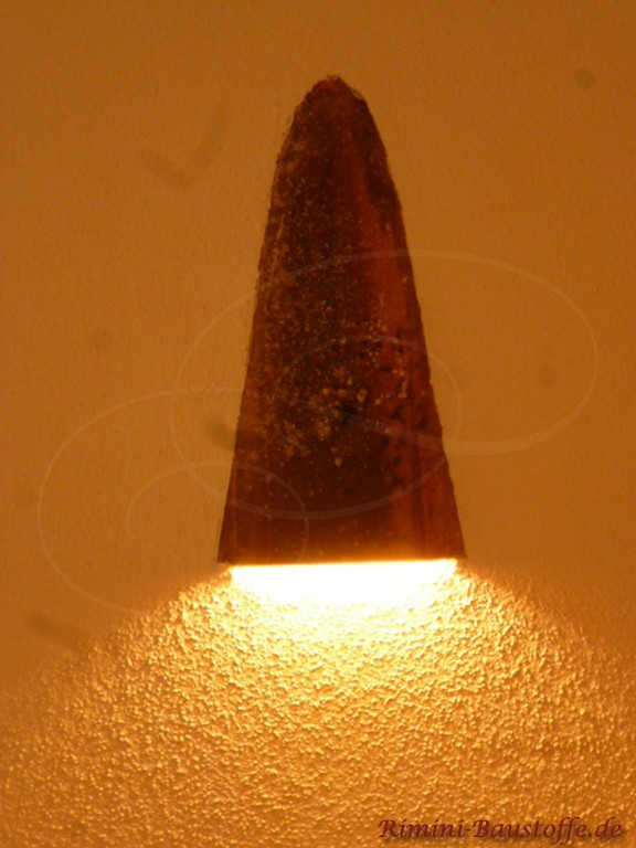 Wandlampe aus einer originalen Mönch nonne Halbschale
