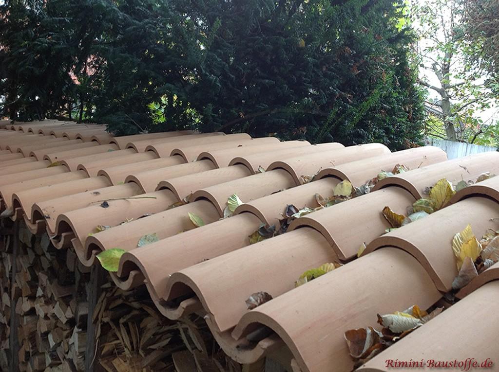 helle Halbschalen auf einer Vorrichtung zur Holzlagerung