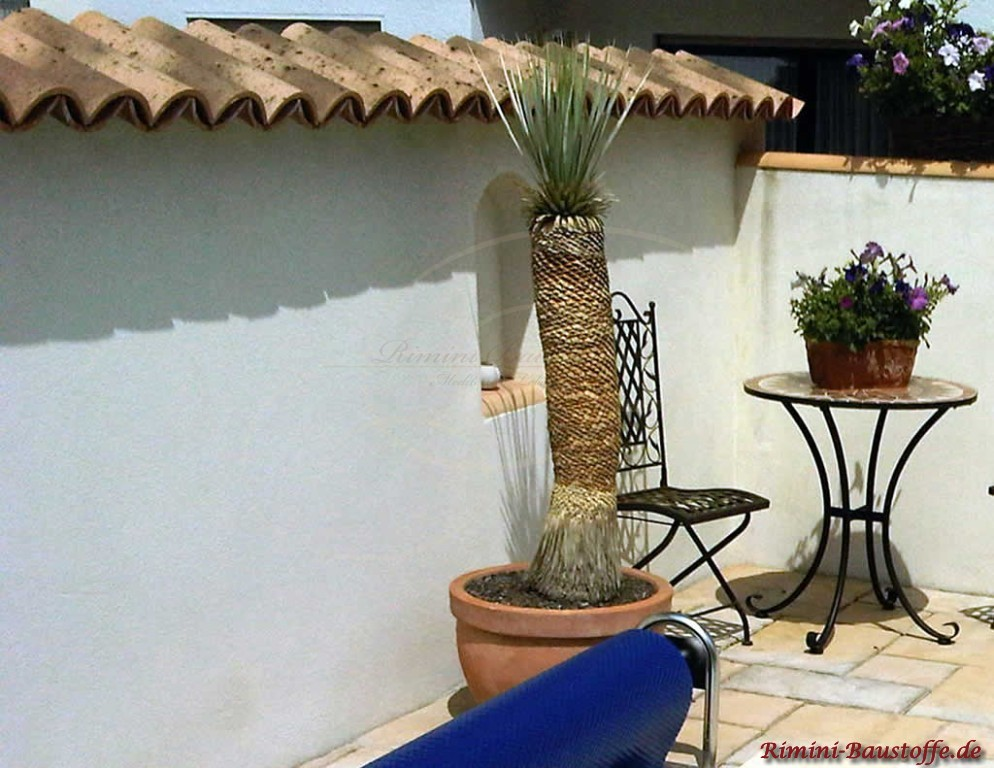 Garten wo eine Grenzmauer im mediterranem Stil zu sehen ist. Außerdem eine kleine Sitzecke und Palme