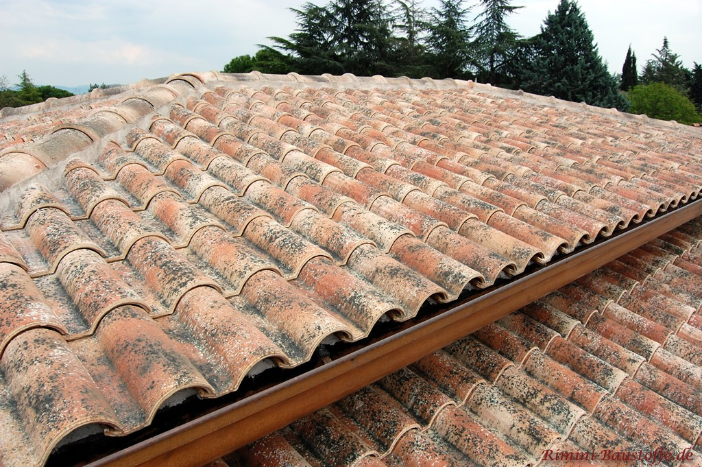 romanischer Dachziegel mit roter Basis und Engobe in alter Optik