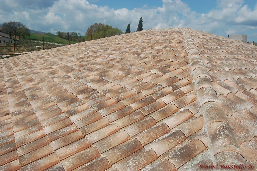 romanischer Dachziegel mit beiger Basis und antikfarbener Engobe
