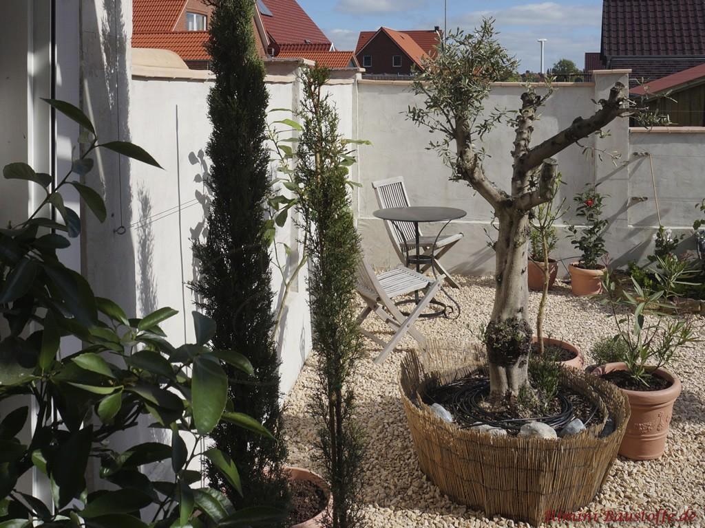 mediterraner Garten mit vielen schoenen Hightlights