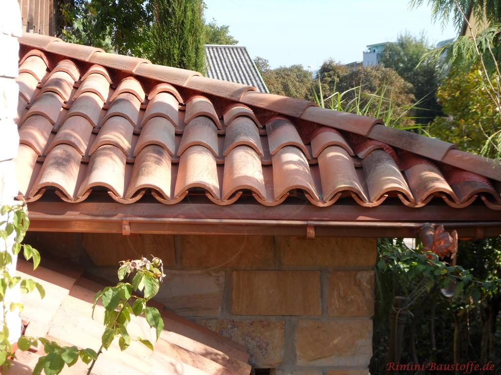 schöne genarbte Mönch-Nonne Halbschaleauf einem Dach