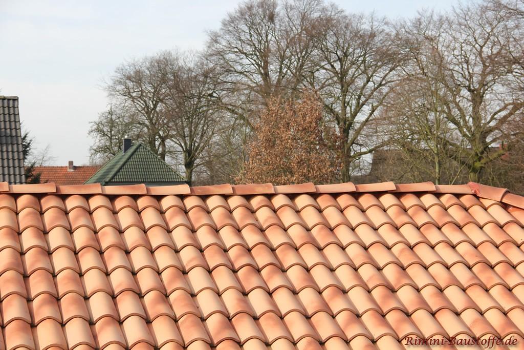 schöner milder strohfarbener Dachziegel in Mönch Nonne Optik