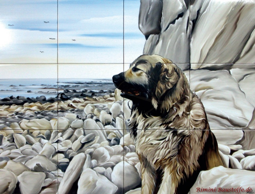tolles Motiv eines Hundes am Strand