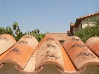 Mauerabdeckungen - Objektbild Teja Curva