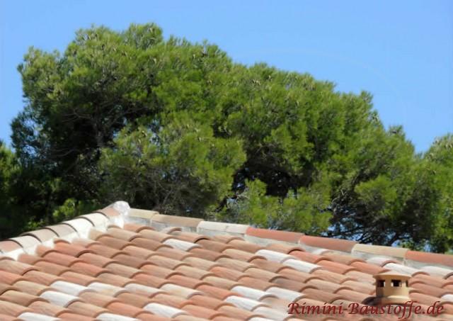sehr schönes mildes mediterranes Dach in natürlichen Rottönen