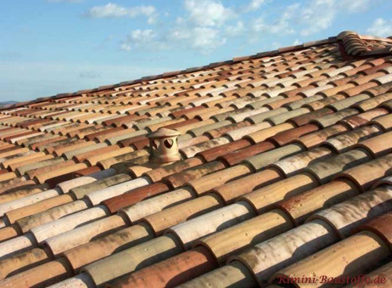 Nahaufnahme eines sehr schönen Dachziegels in einer Herbstlaubmischung mit alter Oberfläche