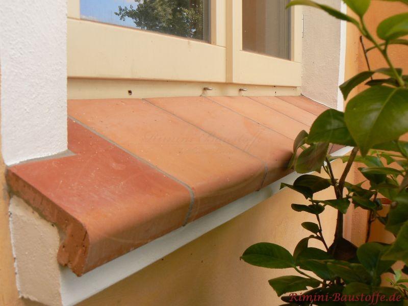 weisse Fenster und Tonfensterbankelemente