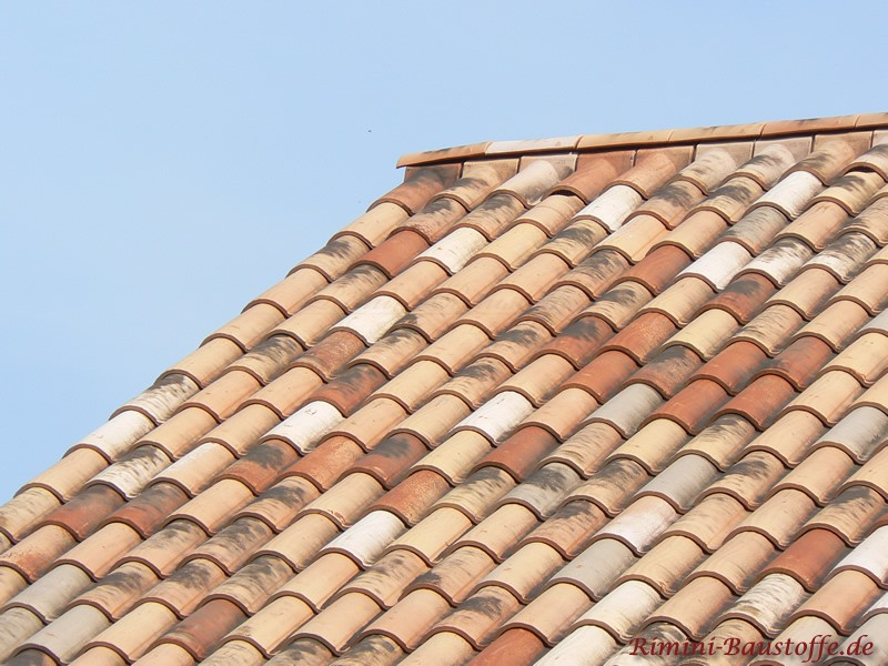 schönes mediterranens Dach in Herbstlaubfarben auf einem Gartenhaus
