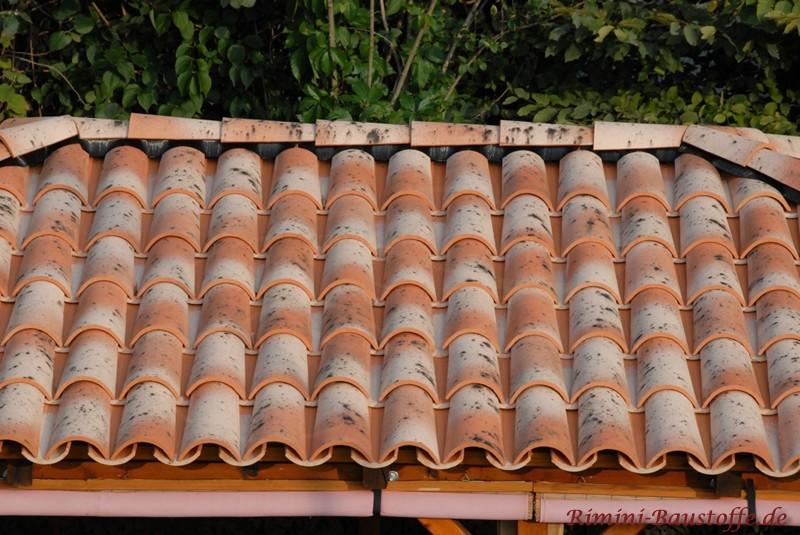 Nahaufnahme eines Mönch Nonne Daches in alten Farben