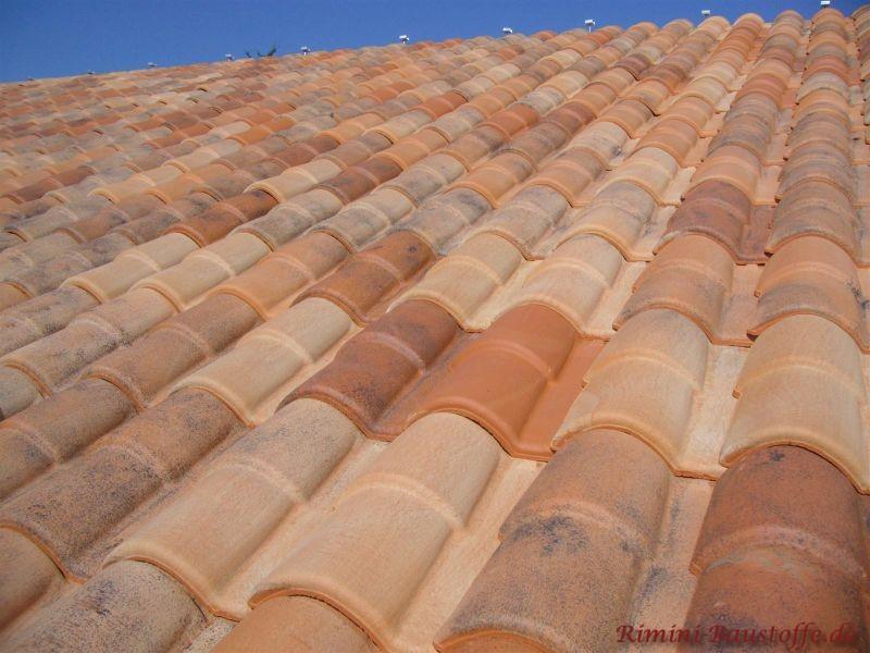 Dachfläche in Herbstlaubfarben