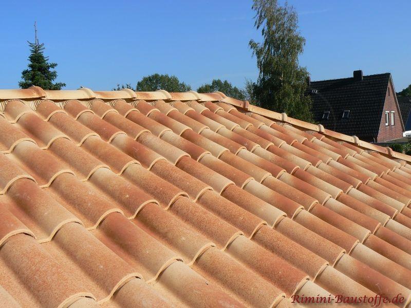 Wunderschöne Dachziegel die im Hochsommer aufgenommen wurden