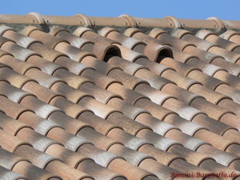 Es ist eine Dachfläche zu sehen, wo auch zwei Dachlüfter eingesetzt sind. Diese werden auch als Schweinenasen bezeichnet und dienen der Sola