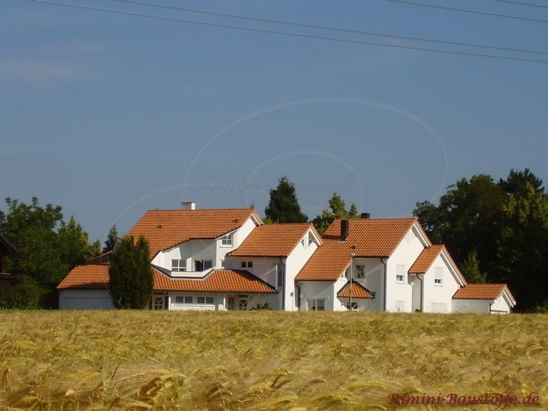 Sehr großes Haus mit rötlicher Dachfläche in Mönch Nonne Art. Im Vordergrund ist ein Feld zu sehen