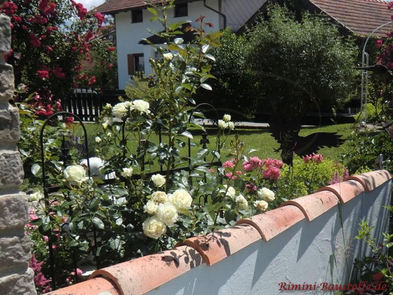 Schöner Garten mit schmaler Mauer und passender Abdeckung in bunten Farben