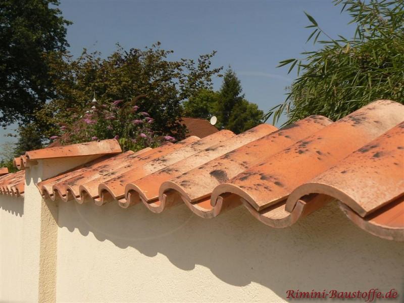 Hell Verputze Mauer mit schräg aufgebrachten Pater Nonne Pfannen als Mauerabdeckung