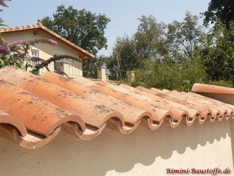 Gerade geputzte Mauer mit Halbschalen als Abdeckung im Hintergrund ein mediterranes Haus