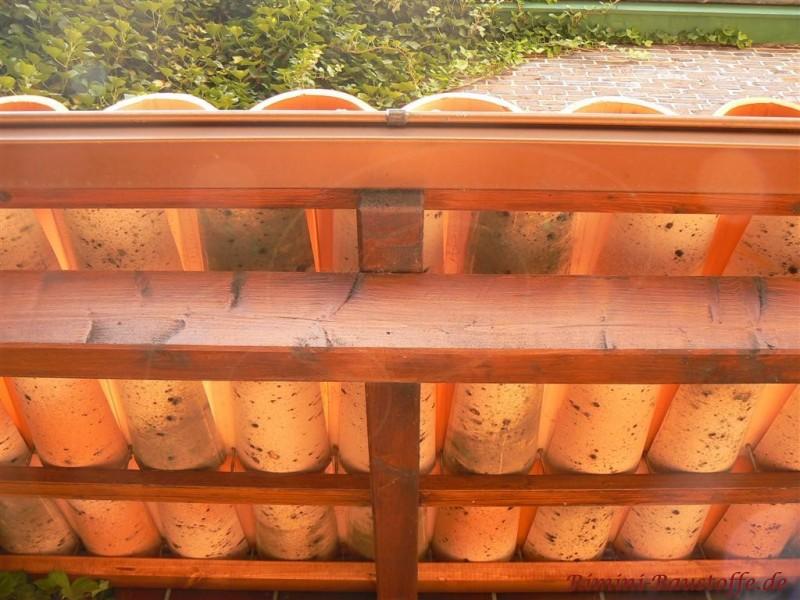 Kleines Vordach mit Mönch Nonne eingedeckt, die von unten zu sehen sind